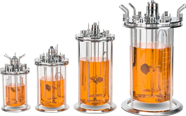 features of Glass Bioreactors