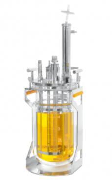 advantages of batch glass reactor