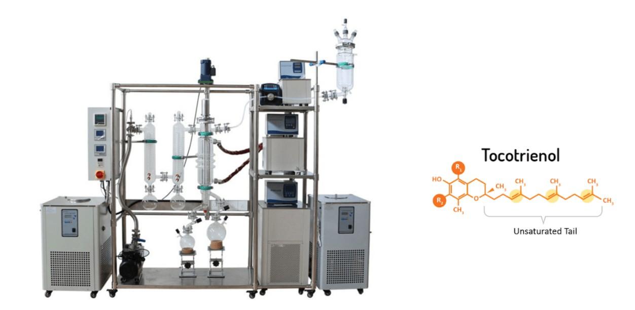tocotrienol extracting with molecular distillation