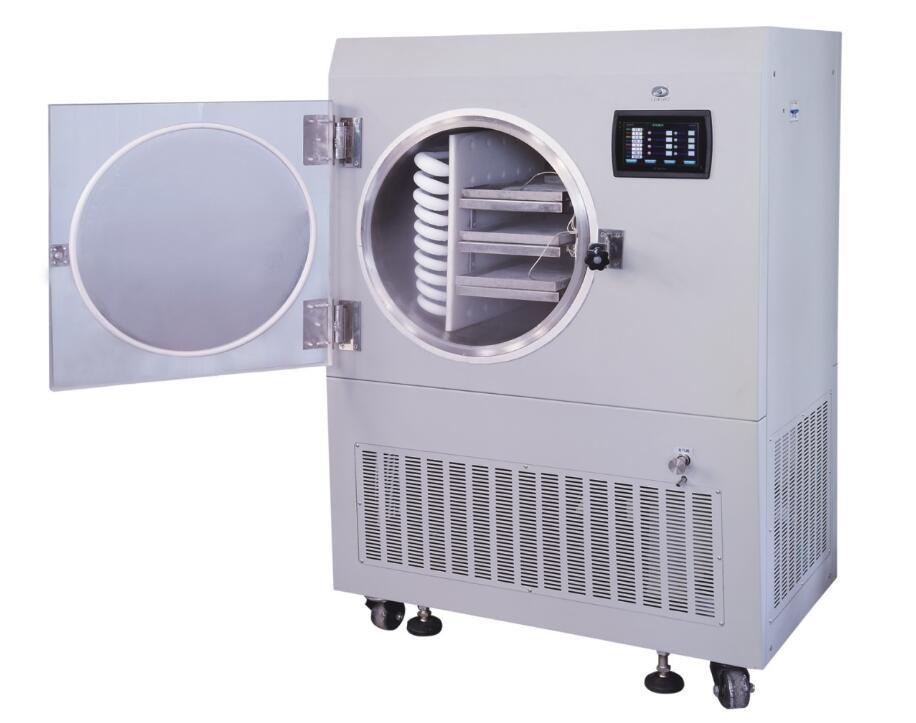 freezer dryer for molecular cooking