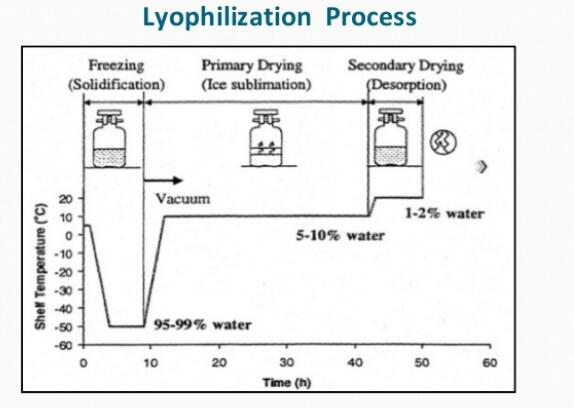 how does lyophilization work